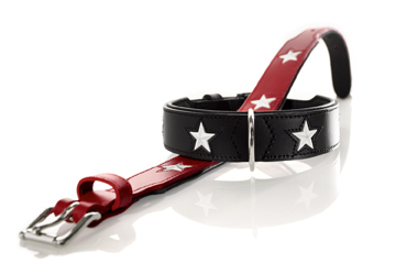 Hunter Hundehalsband Magic Star