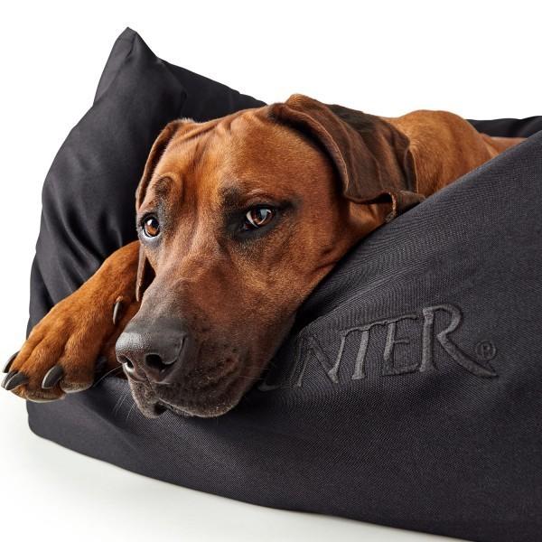 Www Dog Shop Org Hunter Dog Sofa Gent